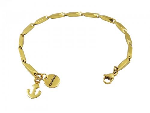 Premium Steel Turtle Gold